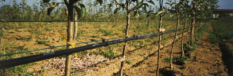 materiale per irrigazione a goccia